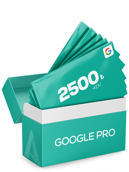 Google Reklam Pro